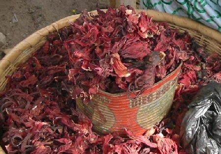 «Bissap»: bebida de hibiscus