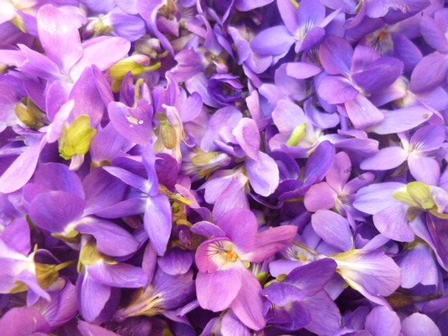 Licor de Violetas