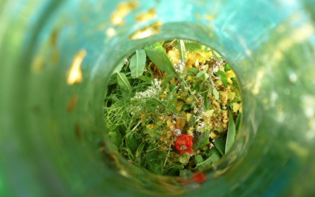 Ratafía, un licor que reúne sabor y medicina de cuarenta plantas