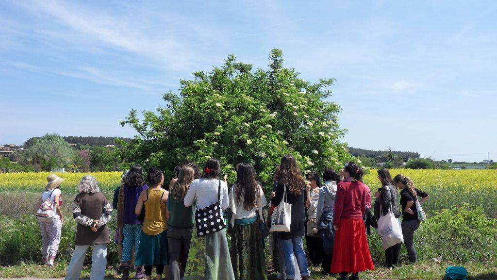 Módulo Doncella: El Viaje de la Mujer Cíclica. Foto: Sophia Style